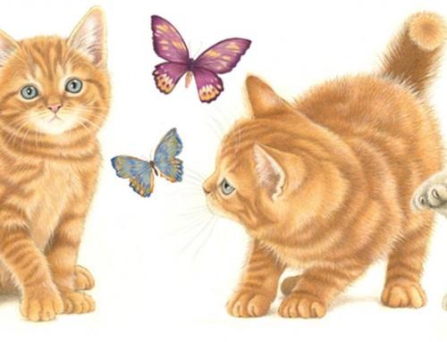 Over 15,000 followers Francien's Cats